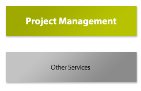 Project_Mgt